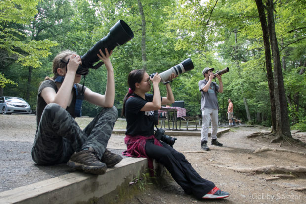 NANPA High School Scholarship Program at the Great Smoky Mountain National Park in Tennessee, USA.