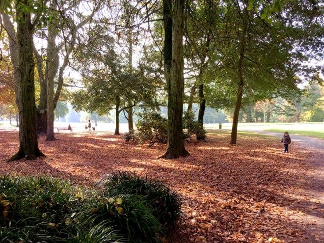 Automne au Parc de Procé à Nantes