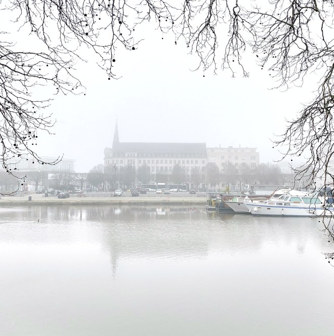 Balades à Nantes en février 2019 près du canal St Félix