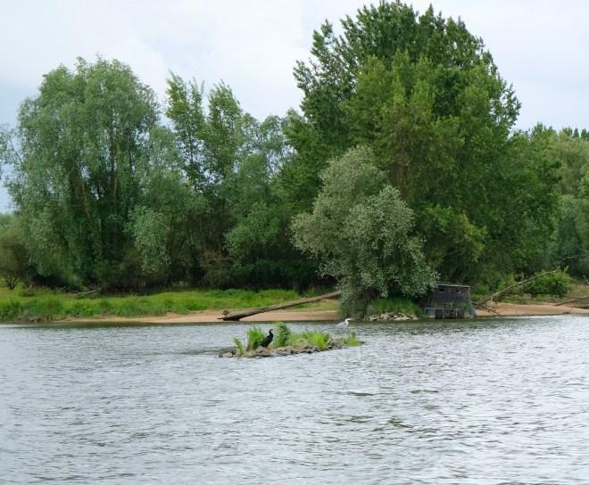 Promenade sur la Loire à bord de la Luce