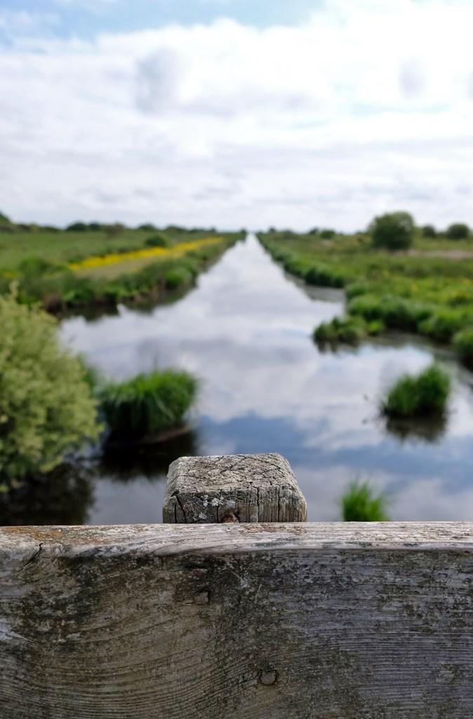 Balade en chaland dans les marais de Brière en Loire-Atlantique