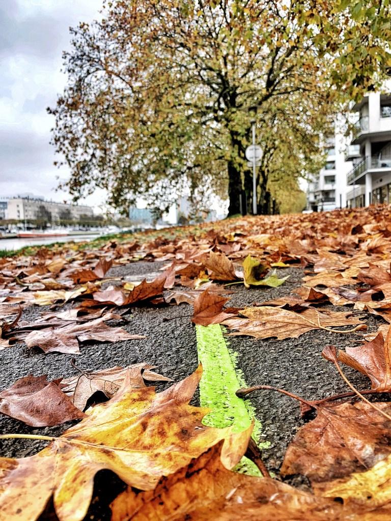 La ligne verte près du canal St Félix à Nantes