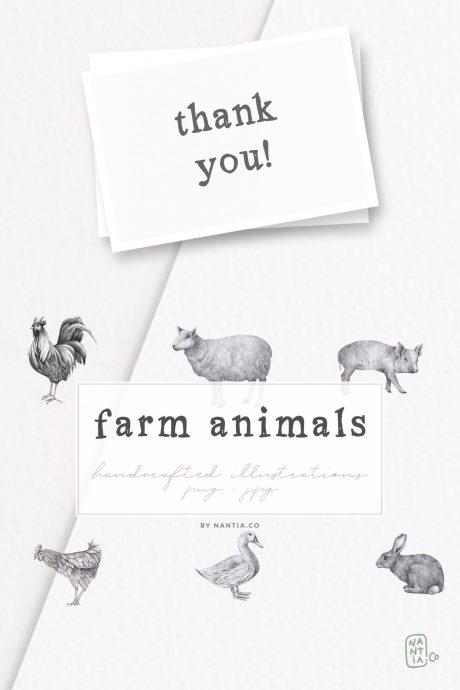 Farm Animals Illustration Pack