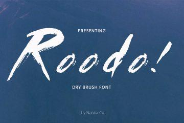 Dry Brush Font Roodo