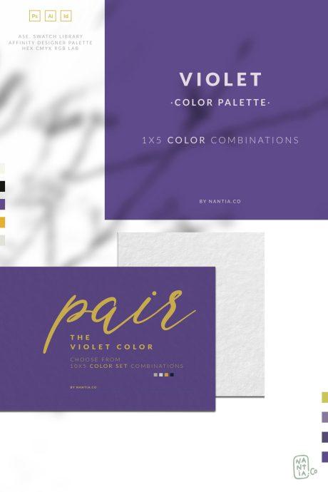 Violet Color Palette collection