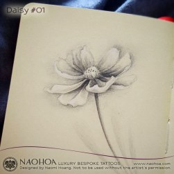 A pencil sketch of a delicate daisy by Naomi Hoang.
