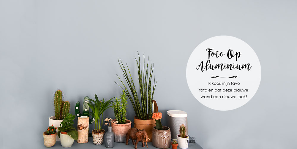 fotoopaluminium.nl-denim-drift-naomi-naokies-styling-makeover-header