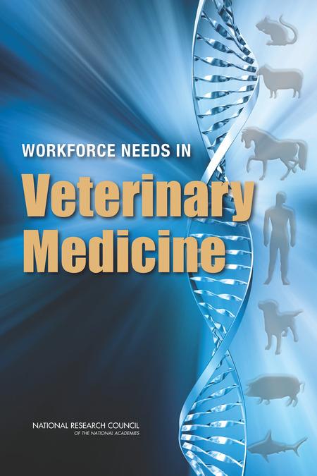 Workforce Needs In Veterinary Medicine The National