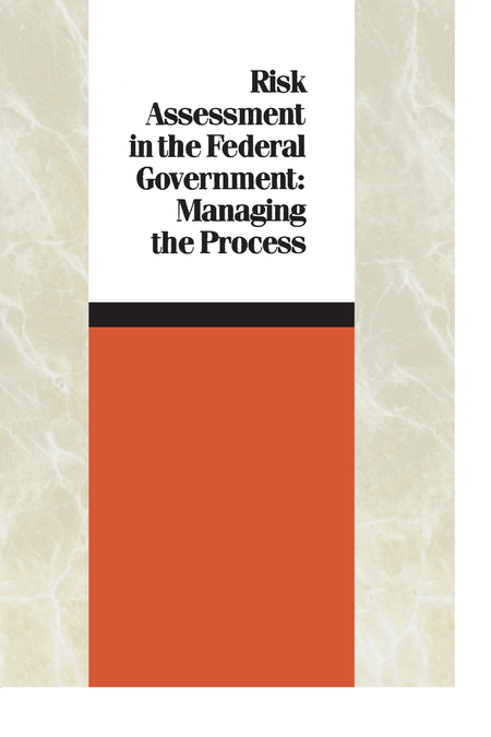 Risk Assessment In The Federal Government Managing The