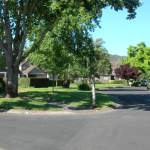 Yountville, Vintage Subdivision, common areas 6