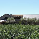 A True Napa Valley Dilemma, When Are There Too Many Wineries?