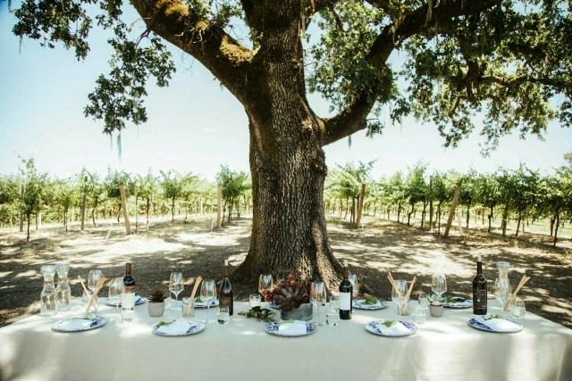 Decadent Summer Picnic & Wine Tasting at Robert Young Vineyards 9