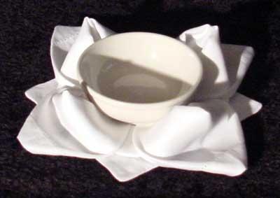Rose napkin pattern