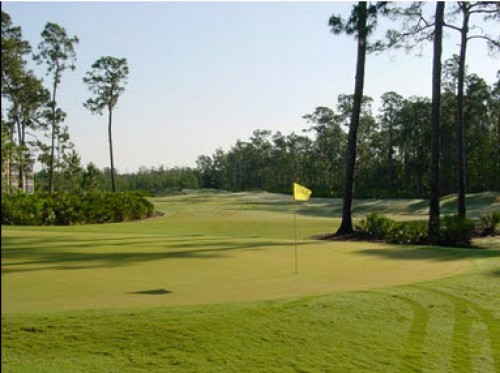 Cedar Hammock Golf