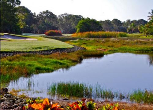 Royal Palm Golf Club