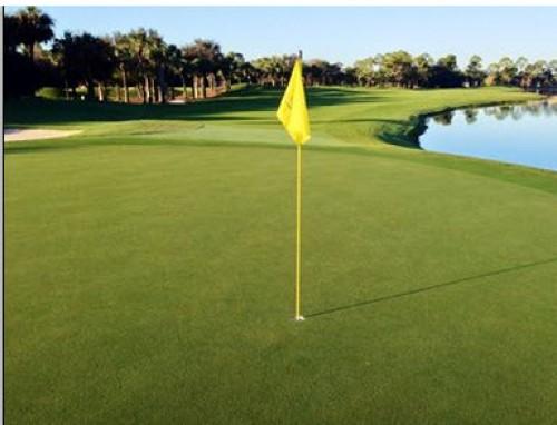 Olde Florida Golf