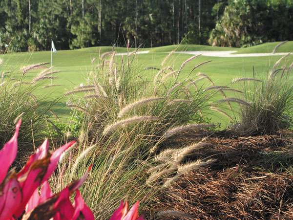 Naples Heritage Golf Club - Naples Golf Homes | Naples Golf Guy