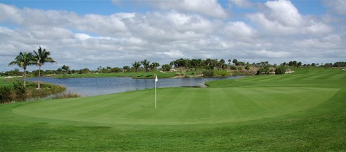 Hammock Bay GC