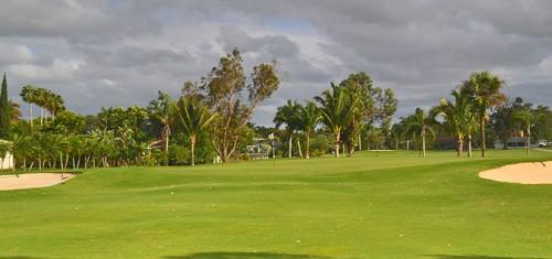 Hibiscus Golf