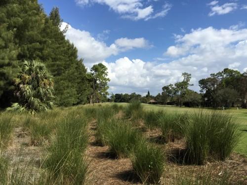 Quail Run Golf