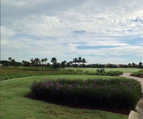 rookery country club naples fl