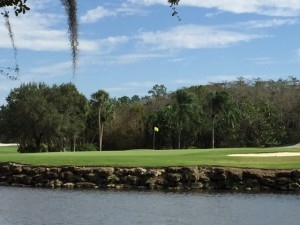 Estero Golf Communities