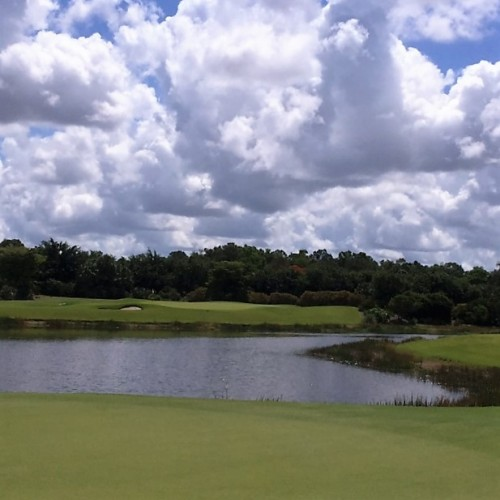 Treviso Bay Golf Club Naples FL