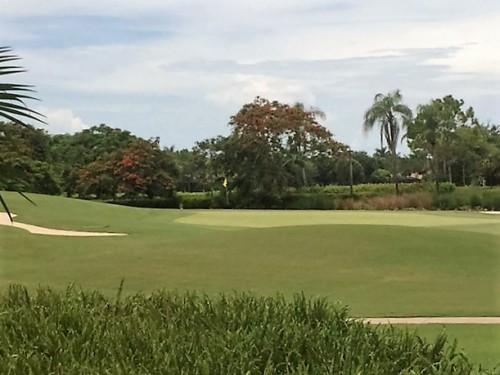 Palmira Golf