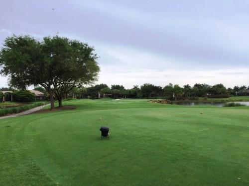 Shadow Wood Golf