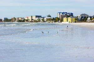 Estero Florida Home Sales