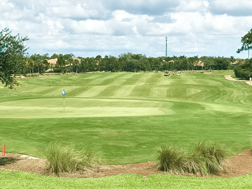 Plantation Golf Club Ft Myers