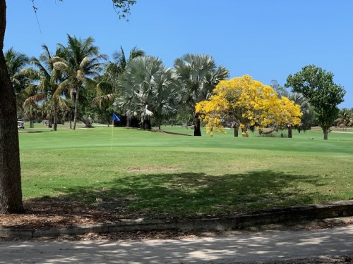 Golf Courses in Southwest Florida