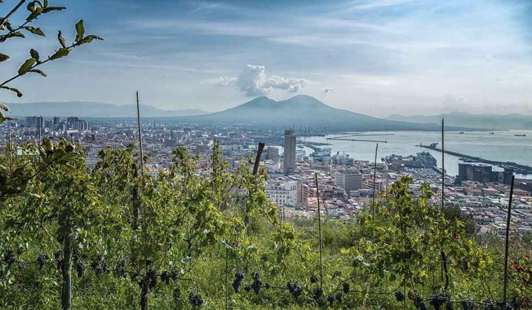 Vigna di San Martino, Napoli