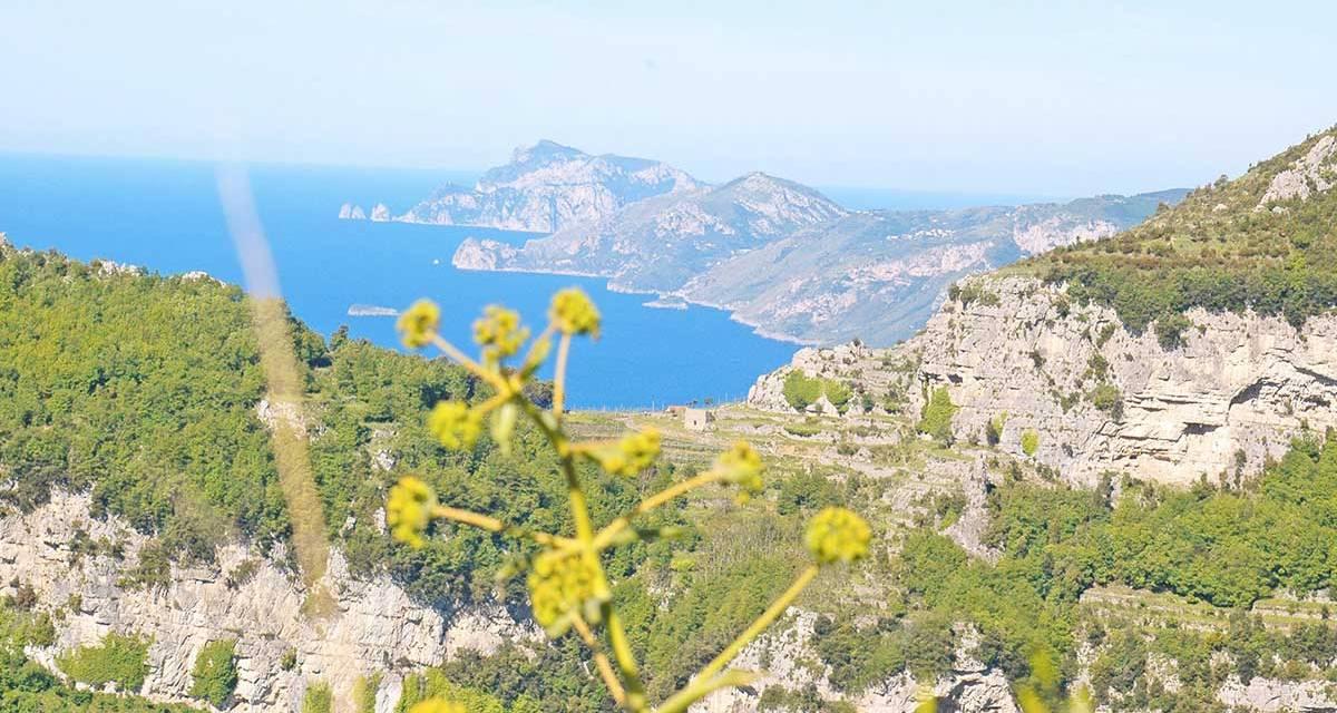 Il sentiero degli Dei, costiera Amalfitana