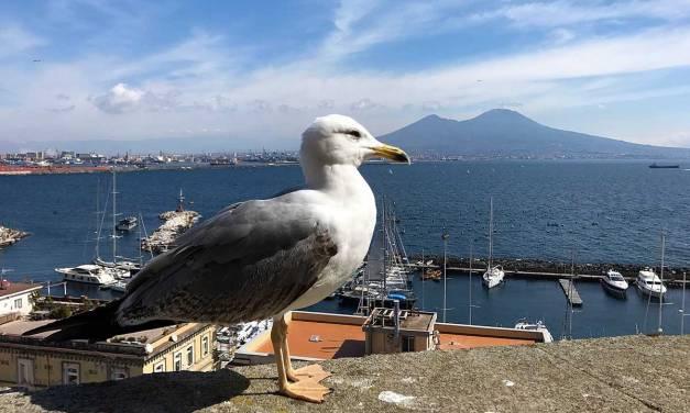 Napoli: come rimettersi in forma dopo le feste
