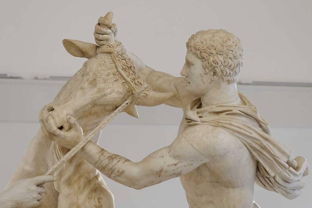 Toro Farese Museo Archeologico Napoli