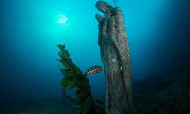 Immersioni subacquee nel Golfo di Napoli