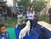 Area Cani cortile di Santa Chiara napoli