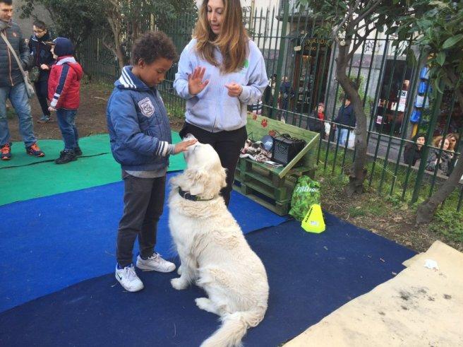 Area Cani cortile di Santa Chiara