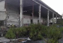 Poggioreale, ritrovamento choc: cadavere nell'ex mercato ortofrutticolo
