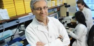 Scienziati campani scoprono come sottrarre energia ai tumori