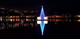 L'albero galleggiante di Bacoli, il più bello del mondo