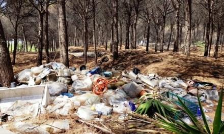 Vesuvio: incendio appiccato per smaltire rifiuti illegali
