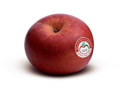 Risultati immagini per mela annurca igp campania