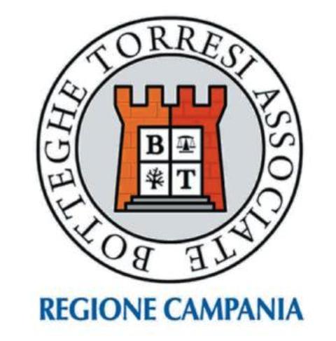 Logo Botteghe torresi