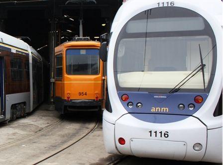 tram anm