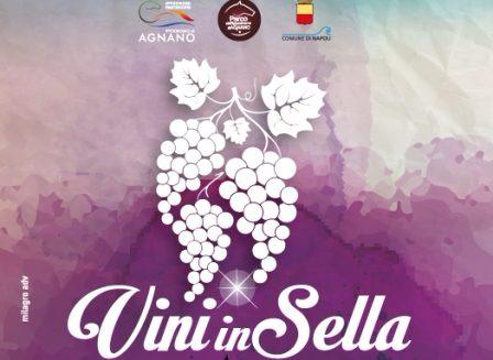 vini_in_sella