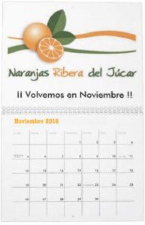 las-mejores-naranjas-de-valencia-Volvemos-en-noviembre-2016