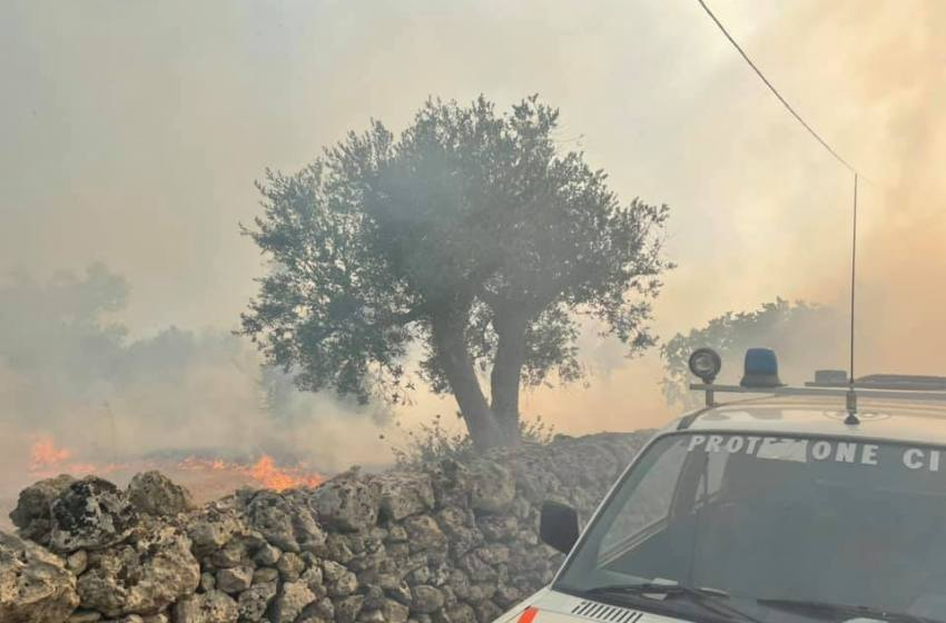 IL SALENTO BRUCIA ANCORA: OLTRE 500 ALBERI DI ULIVO DISTRUTTI DALLE FIAMME