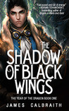 Visiting Mystical Japan: The Shadow of Black Wings by James Calbraith